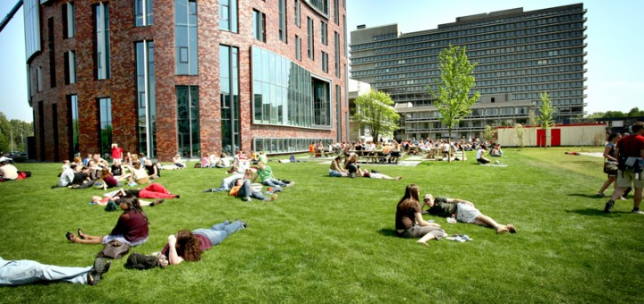 Высшее образование в Голландии: стоимость и особенности обучения.